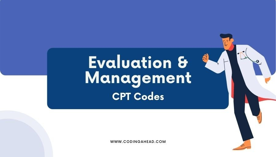 evaluation and management cpt codes